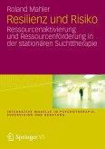 Resilienz und Risiko (eBook, PDF)