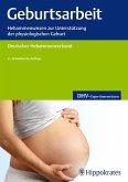 Geburtsarbeit (eBook, PDF)