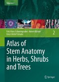 Atlas of Stem Anatomy in Herbs, Shrubs and Trees (eBook, PDF)