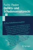 Delikts- und Schadensersatzrecht (eBook, PDF)