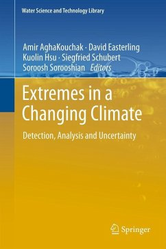 Extremes in a Changing Climate (eBook, PDF)