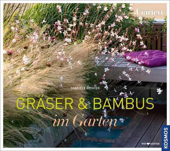 gr ser und bambus im garten von gabriele richter buch. Black Bedroom Furniture Sets. Home Design Ideas