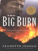 The Big Burn (eBook, ePUB)