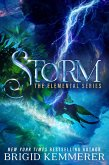Storm (eBook, ePUB)