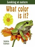 What Color Is It? (eBook, PDF)