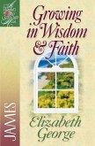 Growing in Wisdom and Faith (eBook, ePUB)