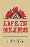 Life in Mexico (eBook, ePUB)