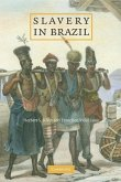Slavery in Brazil (eBook, ePUB)