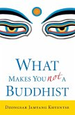 What Makes You Not a Buddhist (eBook, ePUB)