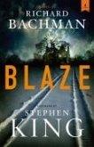 Blaze (eBook, ePUB)