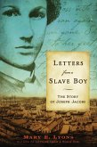 Letters from a Slave Boy (eBook, ePUB)