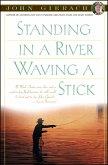 Standing in a River Waving a Stick (eBook, ePUB)