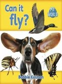 Can It Fly? (eBook, PDF)