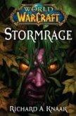 World of Warcraft: Stormrage (eBook, ePUB)