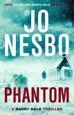 Phantom (eBook, ePUB)