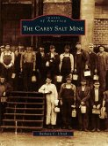 Carey Salt Mine (eBook, ePUB)