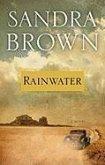 Rainwater (eBook, ePUB)