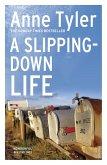 A Slipping Down Life (eBook, ePUB)