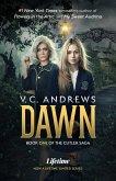 Dawn (eBook, ePUB)