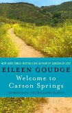 Welcome to Carson Springs (eBook, ePUB)