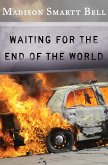 Waiting for the End of the World (eBook, ePUB)