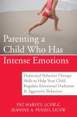 Parenting a Child Who Has Intense Emotions (eBook, ePUB)