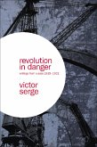 Revolution In Danger (eBook, ePUB)