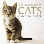 Amazing Life of Cats (eBook, ePUB)