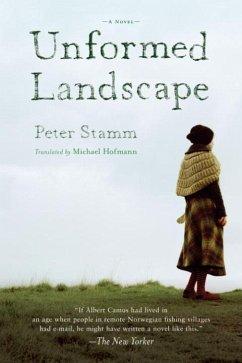 Unformed Landscape (eBook, ePUB) - Stamm, Peter
