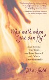 Why Walk When You Can Fly (eBook, ePUB)