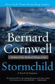 Stormchild (eBook, ePUB)