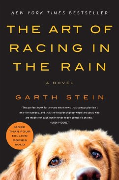 The Art of Racing in the Rain (eBook, ePUB) - Stein, Garth