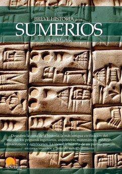 Breve historia de los sumerios (eBook, ePUB) - Martos Rubio, Ana