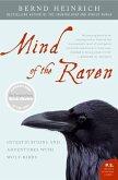 Mind of the Raven (eBook, ePUB)
