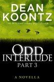 Odd Interlude Part Three (eBook, ePUB)