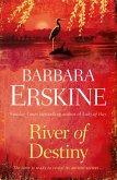 River of Destiny (eBook, ePUB)
