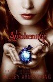 The Awakening (eBook, ePUB)