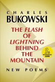The Flash of Lightning Behind the Mountain (eBook, ePUB)