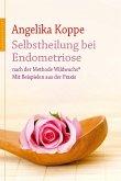 Selbstheilung bei Endometriose (eBook, ePUB)