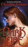 Dark Fire (eBook, ePUB)