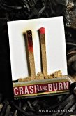 Crash and Burn (eBook, ePUB)