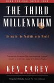 The Third Millennium (eBook, ePUB)
