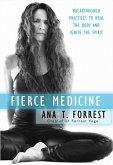 Fierce Medicine (eBook, ePUB)