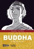 Buddha Bd.8