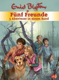 Fünf Freunde - 3 Abenteuer in einem Band / Fünf Freunde Sammelbände Bd.1 - Blyton, Enid