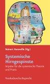 Systemische Hirngespinste (eBook, PDF)