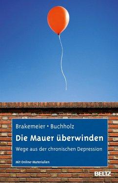 Die Mauer überwinden - Brakemeier, Eva-Lotta; Buchholz, Angela