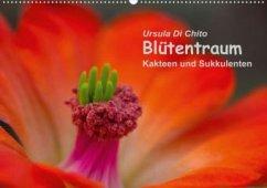 Blütentraum - Kakteen und Sukkulenten (Posterbuch DIN A2 quer)