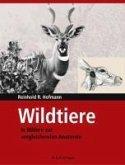 Wildtiere in Bildern zur Vergleichenden Anatomie (eBook, PDF)