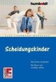 Scheidungskinder (eBook, ePUB)